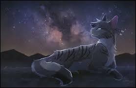 Comment s'appelait Étoile de Feu en tant que chat domestique ?