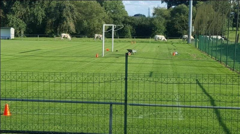 Quelle est la largeur d'un terrain de football ?