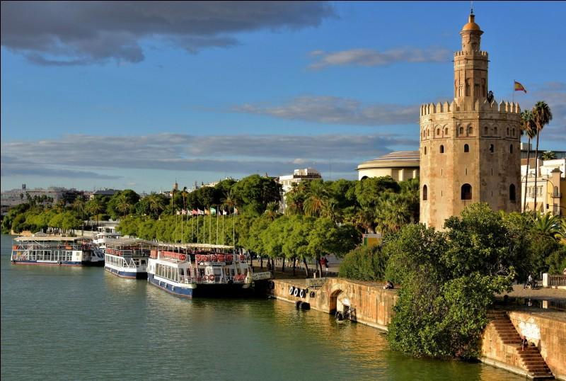 Le Guadalquivir est un fleuve espagnol qui se jette dans...