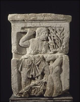 Habitée depuis plus de 3 siècles par les Parisii, Lutèce fut rebâtie sur les ruines de la cité par les ceusses qui l'avaient incendiée : les Romains. Qu'en pensez-vous ?