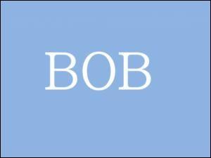 Allez tiens, une petite colle : Bob !