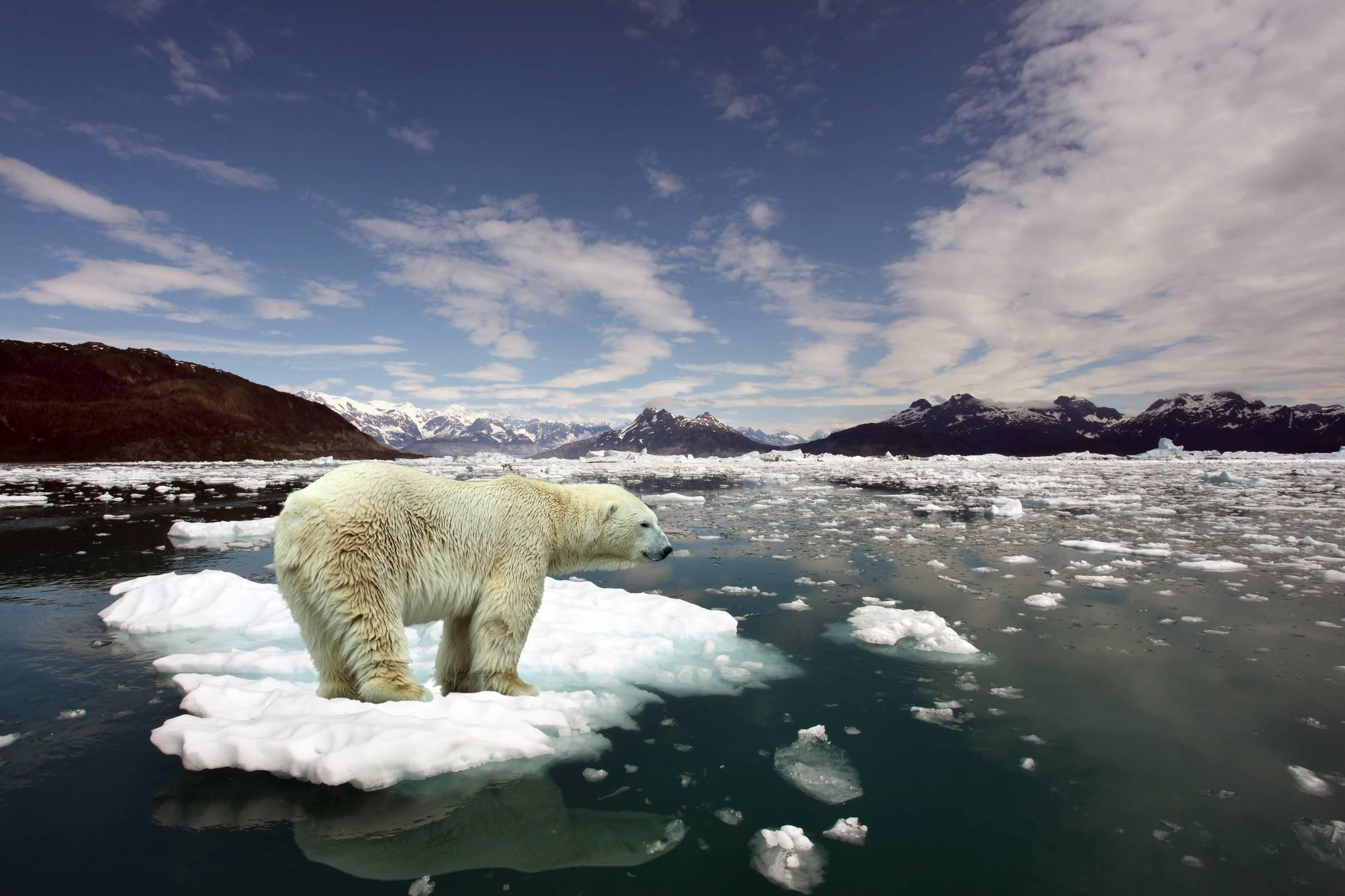 Changement climatique (8)