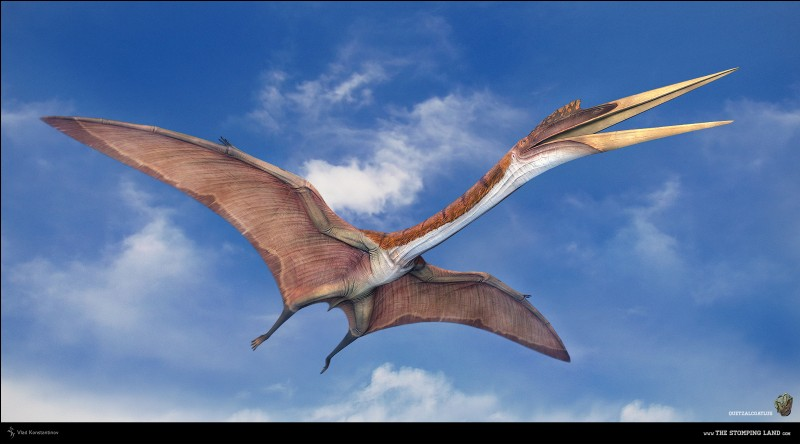 Quel était le plus grand reptile volant ?