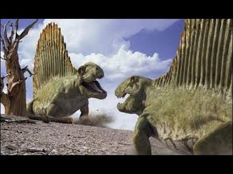Dimétrodon est un dinosaure