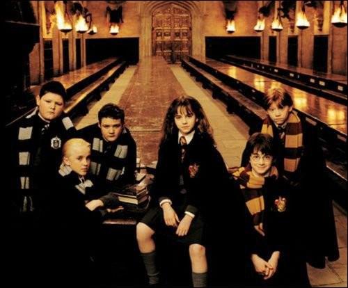 Qui a été le premier ami de Harry à Poudlard ?