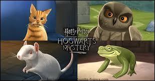 Quel animal appartient à Ronald Weasley, et comment se nomme-t-il ?