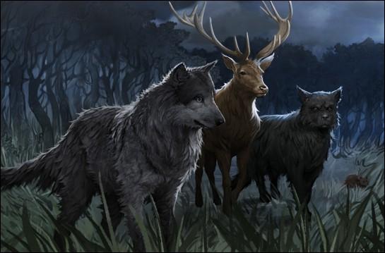 Quel est l'animal en lequel McGonagall peut se transformer ?