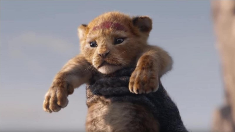 """Quelle ville surnomme-t-on """"La Cité du Lion"""" ?"""