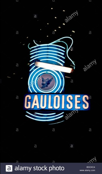 """""""La capitale des Gaules"""" est :"""