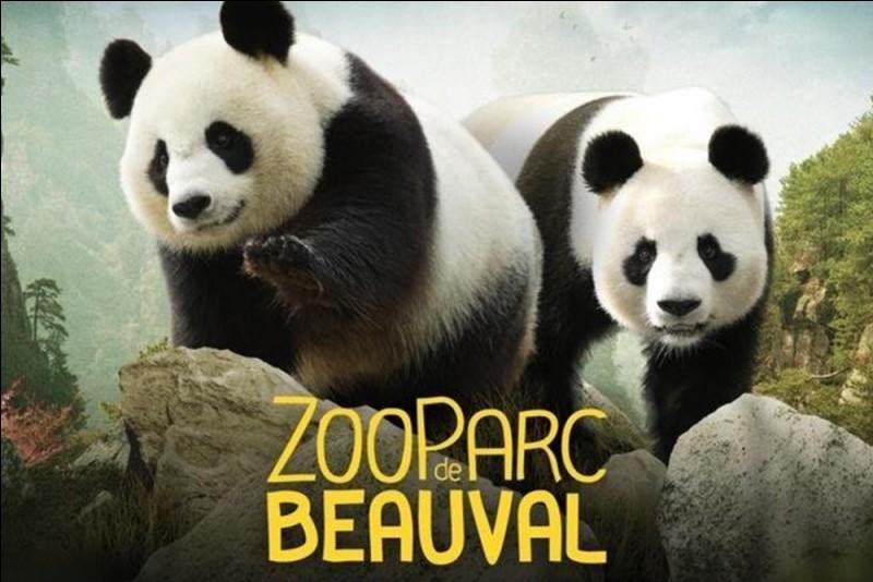 Peut-être serez-vous plus inspiré(e) par le Parc de Beauval !