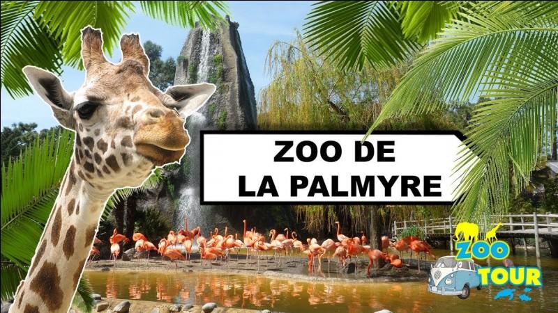 Tiens, pendant qu'on y est, pourquoi ne pas faire un détour par le Zoo de la Palmyre ?
