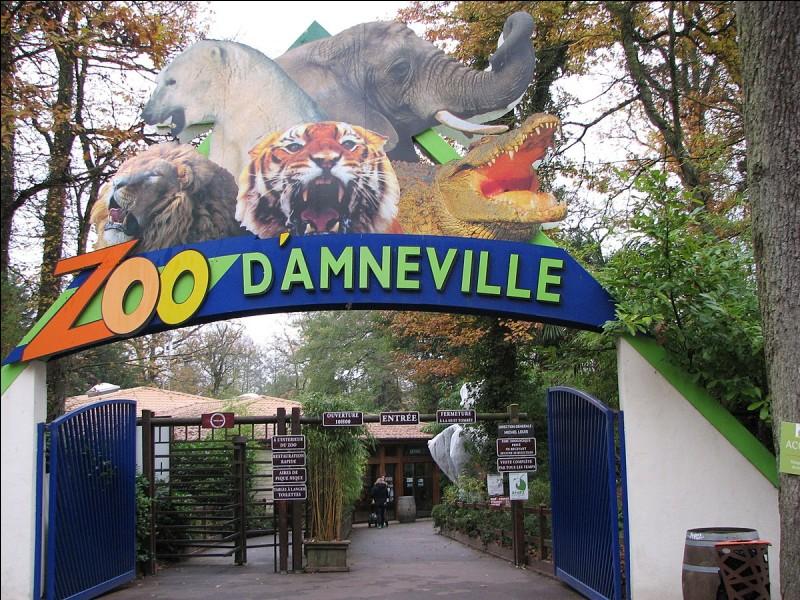 Visitons tous ensemble le Zoo d'Amnéville !