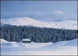 Petit tour en montagne, aux Molunes. Ancienne commune du parc naturel régional du Haut-Jura, elle se situe en région ...