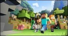 Connais-tu bien ''Minecraft'' ?
