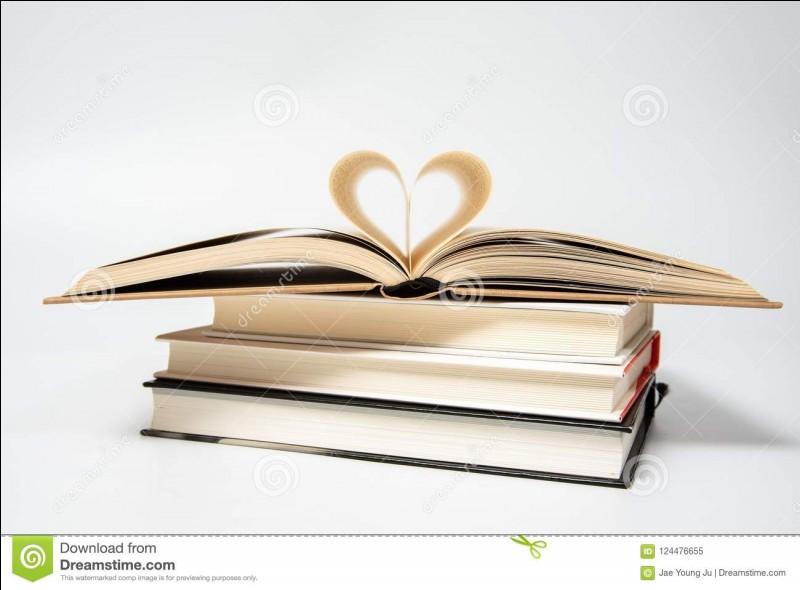 Dernière question sur les strophes. Comment se nomme un poème écrit en une seule strophe ?