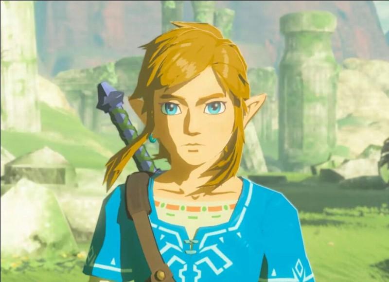 Qui est Link ?