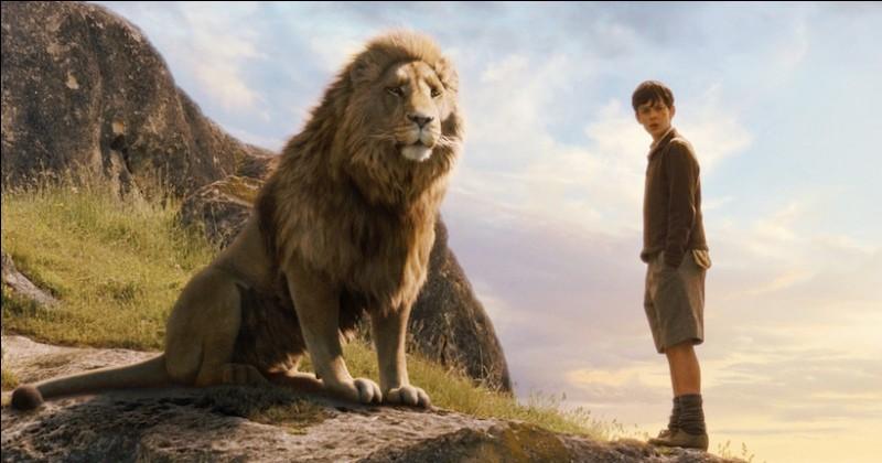 Comment se nomme ce lion ?