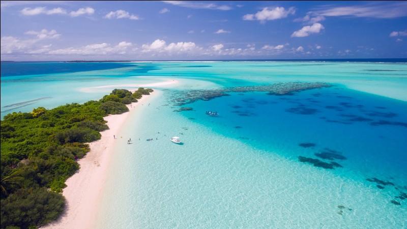 En 1841, le Royaume de France de Louis-Philippe Ier achète l'île de Mayotte.
