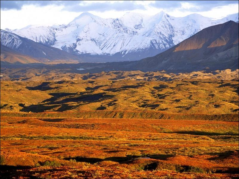 Quel est le paysage le plus caractéristique de l'Alaska ?
