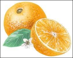 Un quiz sur l'orange !