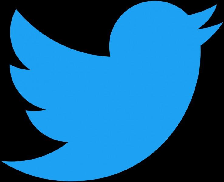 En quelle année le réseau social Twitter a-t-il été créé ?