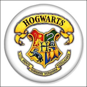 Dans quelle maison de Poudlard, Harry, Ron et Hermione sont-ils envoyés ?