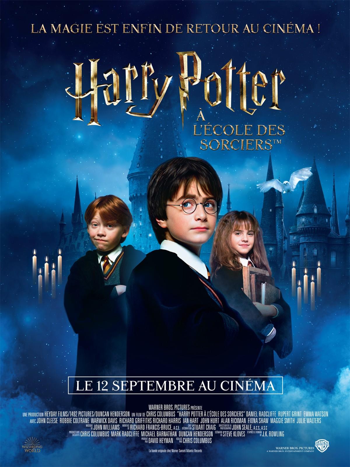 Connais-tu bien 'Harry Potter à l'école des sorciers' ?