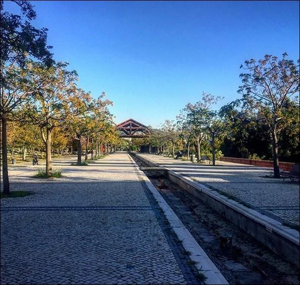 """Cette ancienne gare dite """"du Prado"""" a fait place au """"Parc du 26e centenaire"""" ! Où sommes-nous ?"""