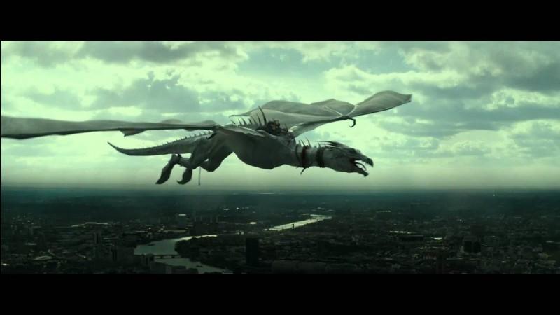 Quelle est la race du dragon que Harry a affronté dans la tâche n•2, dans ''Harry Potter et la coupe de feu'' ?