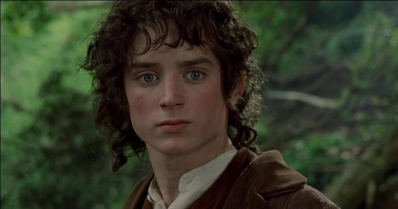 À quel âge Frodon quitte-t-il la Comté ?
