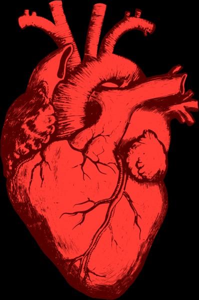 La fréquence cardiaque est de 70 battements par minute, 4 200 par heure, donc _____ par jour !