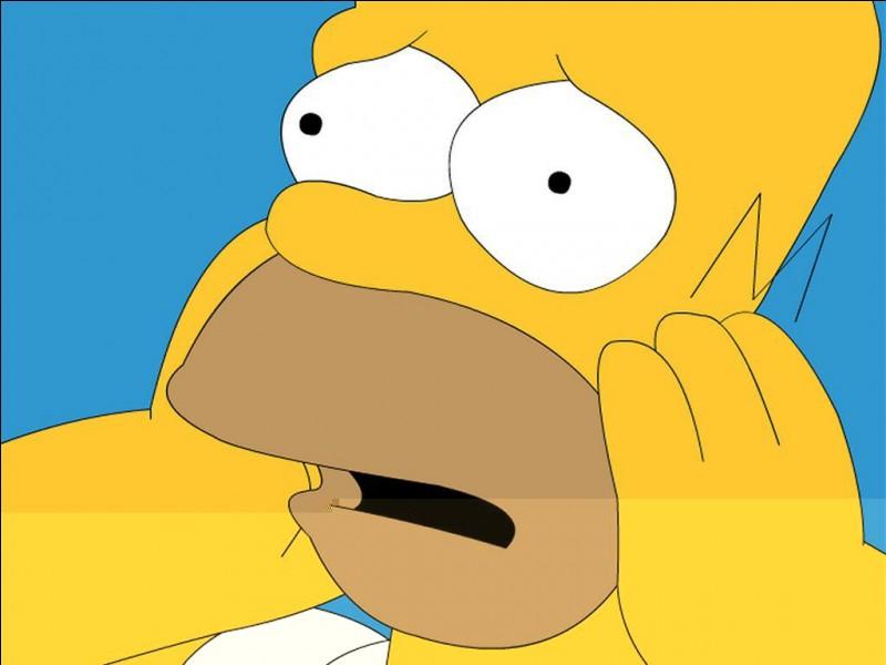 Quelle est l'expression que dit souvent Homer ?