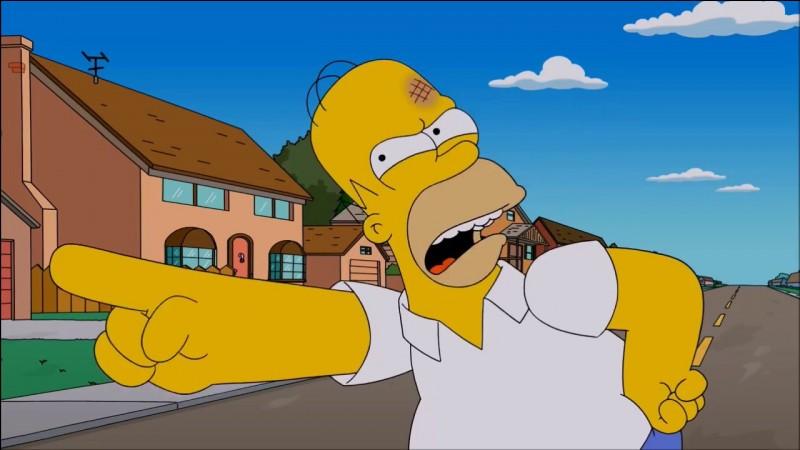 Quel est le deuxième prénom de Homer ?