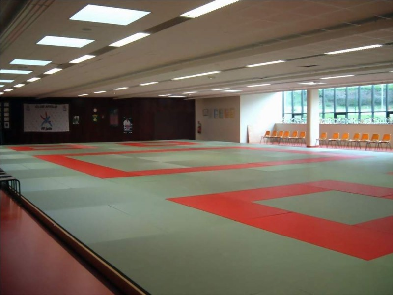 Dans cette salle avec des tatamis, les militaires ont la possibilité de pratiquer des sports de combat et de self- défense. Ceci est un(e)...