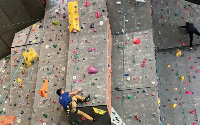 Ici, ils peuvent s'entraîner à faire des descentes en rappel ou sécuriser une personne en hauteur. C'est un mur...