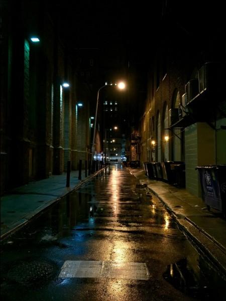 Tu es seul dehors dans la nuit. Tu entends quelqu'un crier dans une maison puis un coup de feu. Que fais-tu ?