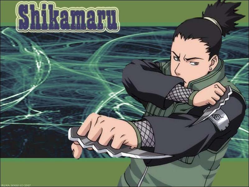 Quelle personne de l'akatsuki shikamaru a t-il vaincu ?