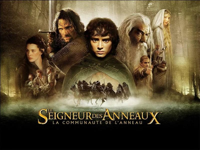 """Qui est le réalisateur de la trilogie du """"Seigneur des anneaux"""" ?"""