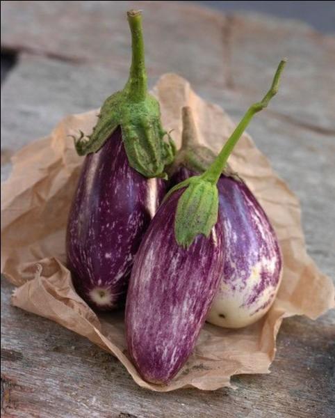 Quel légume est fréquemment utilisé dans la préparation d'un plat italien au parmesan ?