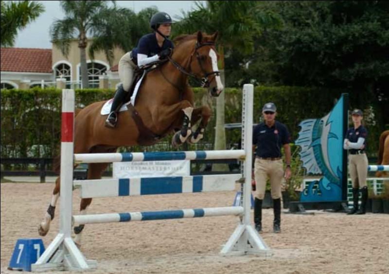 Lors de J.O. et mis à part les épreuves d'équitation, dans quel autre sport intervient le cheval ?