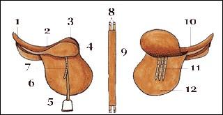 Comment se nomme la partie n°12 ?