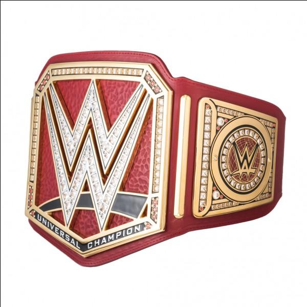 Qui est le champion universal actuel ?