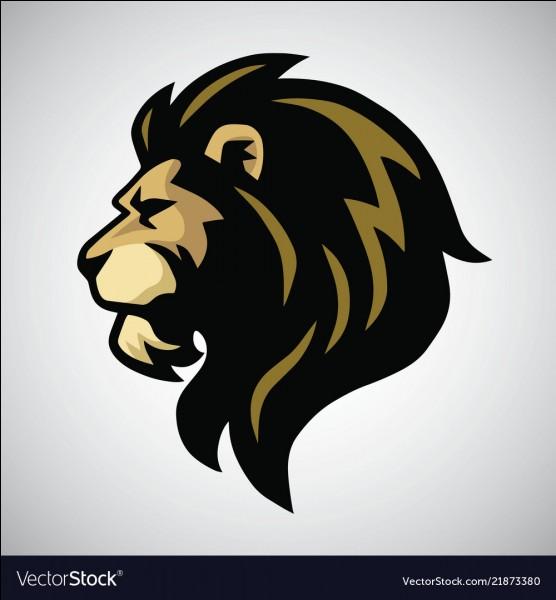 Quel est ce logo suivant ?