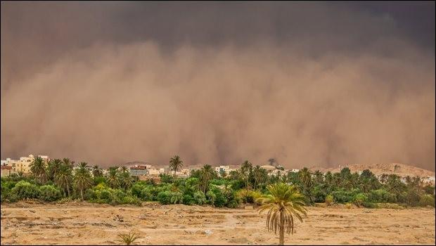 Vent sec et très chaud, de sud-est, venant du Sahara, qui souffle sur l'Afrique du Nord et le sud de la Méditerranée lorsque des dépressions s'installent au-dessus de l'Algérie ou des îles Baléares.