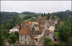 Commune d'Auvergne-Rhône-Alpes, dans l'arrondissement de Vichy, Châtelus se situe dans le département ...