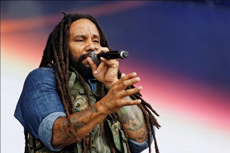 Comment s'appelle la coiffure particulière des chanteurs de reggae ?