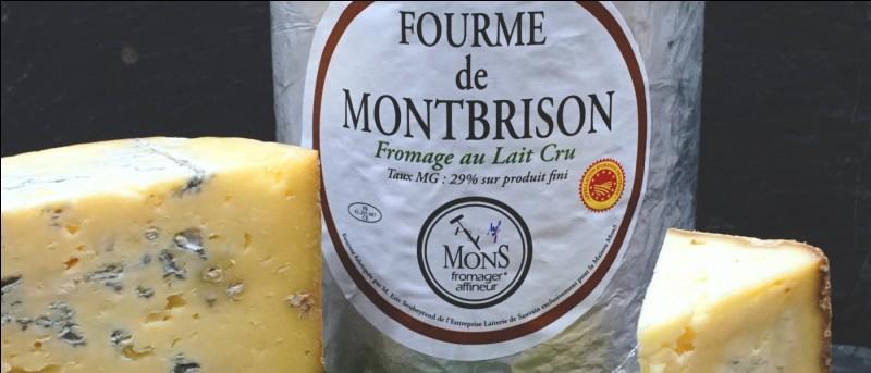 La fourme de Montbrison est un fromage...