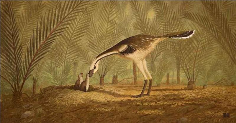 Lequel de ces dinosaures avait des plumes ?