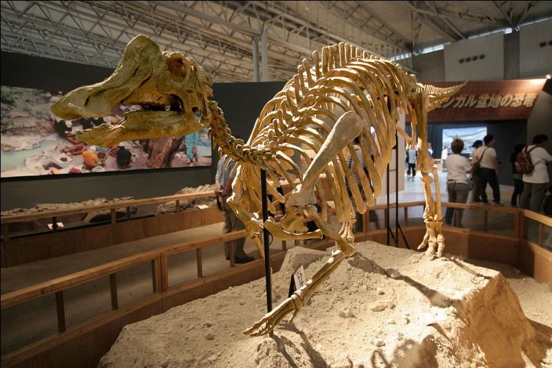 """Que signifie """"Nipponosaurus"""" ?"""