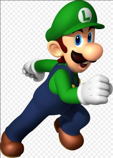 Quelles sont les caractéristiques de Luigi ?